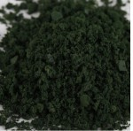 Posypy-na-stromy-Leaves-Foliage-30g-Dark-Green