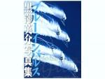 Blue-Impulse-Eisuke-Kurosawa-Photographs