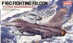 1-48-F-16C-Fighting-Falcon-Flying-Razorbacks