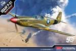 1-48-USAAF-P-51-North-Africa