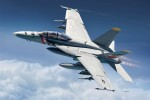 1-72-McDonnell-Douglas-F-A-18F-VFA-2-Bounty-Hunters-Decal-variation