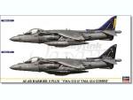 1-72-AV-8B-Harrier-II-Plus-VMA-513-and-VMA-214-Combo