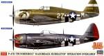 1-72-P-47D-Thunderbolt-Razorback-Bubbletop