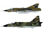 1-72-J35F-Draken-and-SH37-Viggen-F13-Wing-Swedish-Air-Force