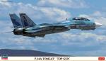 1-72-F-14A-Tomcat-Top-Gun