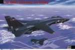 1-72-F-14A-Tomcat-Black-Bunny