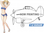 1-20-Egg-Girls-Collection-No-03-Amy-McDonnell-w-P-40-Warhawk