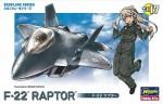 Lockheed-F-22-Raptor-Egg-Plane