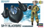 Lockheed-SR-71-Blackbird-Egg-Plane