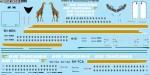1-144-Air-Tanzania-Boeing-737-200-300-Screen-printed-decal