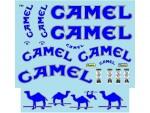 1-18-Lotus-99T-Camel-for-PMA