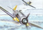 1-72-FW-109D-9-Early