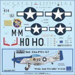 1-24-P-51D-Petie-2nd-N314BG