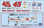 1-24-Risky-Business-P-51D