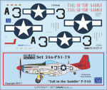 1-24-Tall-in-the-Saddle-P-51D