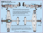 1-32-Big-Beautiful-Doll-P-51D-Version-A