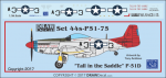 1-144-Tall-in-the-Saddle-P-51D