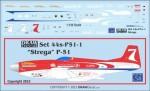 1-144-Strega-P-51-Mustang-Racer