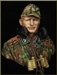 1-10-German-WAFFEN-SS-Panzer-Officer-WWII