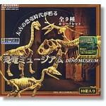 Dino-Museum-1-Box-10pcs