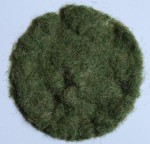 Staticka-trava-12mm-casne-leto-40g-Grass-Flock-12mm-Early-Summer-40g