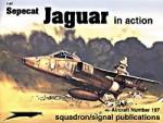 Sepecat-Jaguar-In-Action