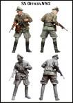 1-35-SS-Officer-WW2