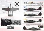 1-32-P-62-Black-Widow