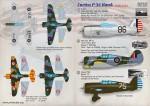 1-72-Curtiss-P-36-Hawk