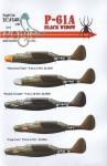 1-48-Northrop-P-61A-Black-Widow-