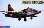 1-72-Sukhoi-Su-25UB-FROGFOOT