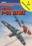 RARE-Curtiss-P-36-Hawk-1-dil-POSLEDNI-KUS
