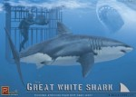 Great-White-Shark-with-diver-and-cage-kit
