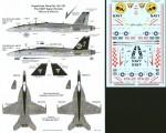 1-48-Boeing-F-A-18E-F-A-18F-Super-Hornets-2