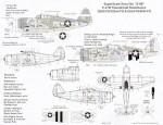 1-72-Republic-P-47D-Thunderbolt-Razorbacks-2
