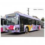 1-150-The-Bus-Collection-Matsudo-Shin-Keisei-Bus-15th-Anniversary-Matsudo-Rhododendron-Design-Bus