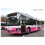 1-150-The-Bus-Collection-Matsudo-Shin-Keisei-Bus-15th-Anniversary-Shin-Keisei-Electric-Railway-Design-Bus