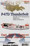 1-32-USAAF-Republic-P-47D-30RA-s-n-44-33813