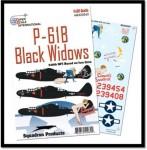 1-32-Northrop-P-61B-Black-Widows-of-the-548th-NFS