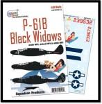 1-32-Northrop-P-61B-Black-Widow-414th-418th-and-422nd-NFS