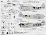 1-48-Republic-P-47D-3-Bubble-tops-433283-7