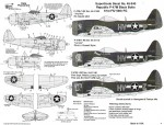 1-48-Republic-P-47M-Black-Thunderbolts-61FS-5