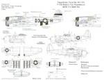 1-48-P-47D-Thunderbolt-Bubble-1-226932-D3-H-397-FS-368