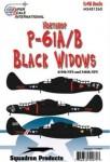 1-48-Northrop-P-61-Black-Widow-3
