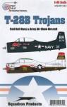 1-48-North-American-T-28B-TROJANS-SHOW-BIRDS-