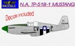 1-48-N-A-TP-51B-Trainer-Mustang-Conversion-for-Fujimi