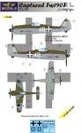 1-144-Captured-Fw-190F-part-3