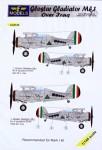 1-144-Gloster-Gladiator-Mk-I-over-Iraq