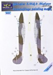 1-48-Gloster-F-Mk-4-Meteor-Camoufl-painting