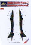 1-72-Mask-Harrier-T-2-Camoufl-painting-SWORD
